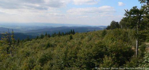 achslach-hirschenstein-bayerischer-wald-panorama-660
