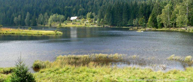 arbersee-kleiner-rundwanderweg-schwimmende-inseln-ausflugsziele
