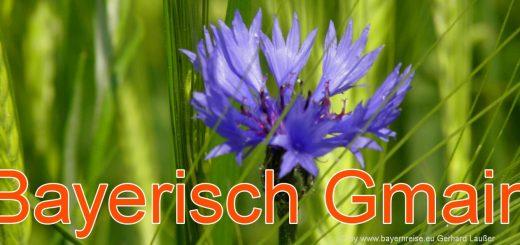 bayerisch-gmain-ausflugsziele-sehenswuerdigkeiten-freizeitangebote