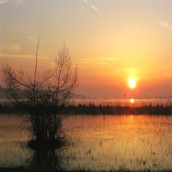 Urlaub Freizeittipps Chiemsee Sonnenaufgang bei Prien