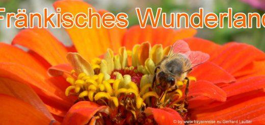 fraenkisches-wunderland-plech-freizeitpark-bayern-tagesausflug