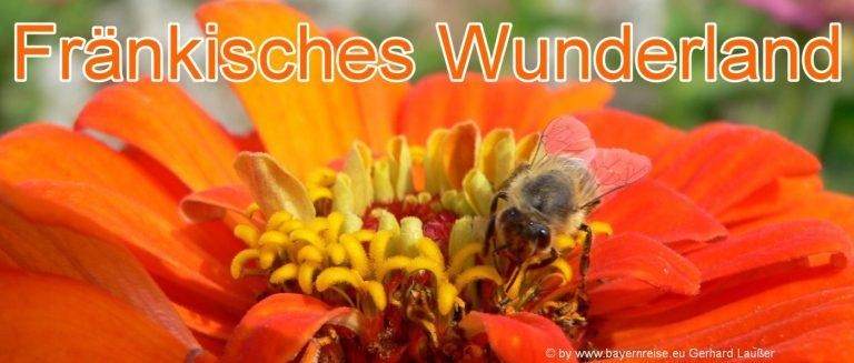 fränkisches-wunderland-plech-freizeitpark-bayern-tagesausflug
