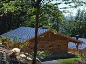 Urlaub in Deutschland Luxus Chalet Holz Ferienhaus