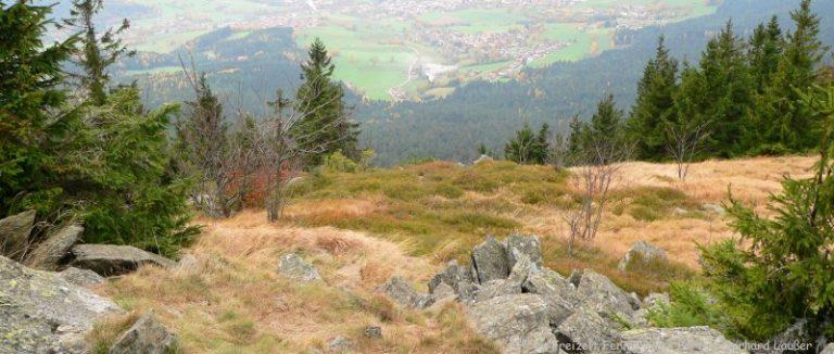 osser-wandern-bayerischer-wald-gipfelblick-panorama-660
