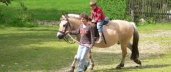 Reiturlaub in Bayern Ferien am Ponyhof mit Reitunterricht
