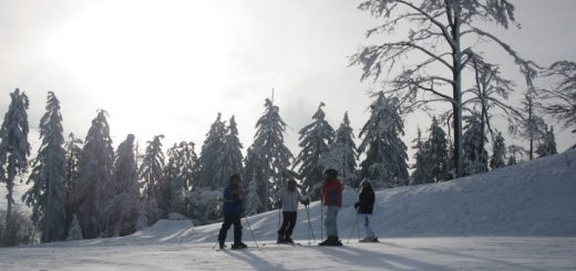 skiurlaub-bayerischer-wald-boehmerwald-skifahren-hochficht-zwieselberg-panorama-800