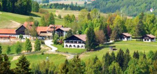 urlaub-mit-hund-ferienwohnungen-bayerischer-wald-gut-feuerschwendt-660