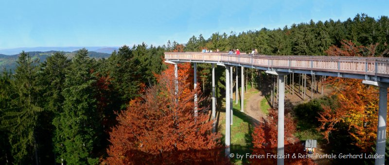 Waldwipfelweg Bayern Baumkronenpfad Sankt Englmar