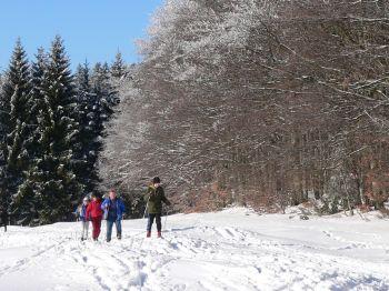 Langlaufurlaub Skilanglauf in Bayern